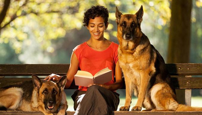 Online Pet Care Business Course