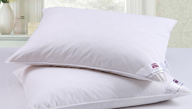 Dickens Goose Feather and Down Pillows - 2 or 4