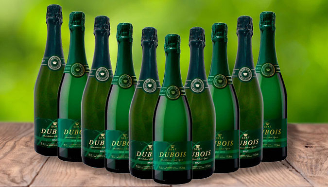 £39.95 Until Monday - 12 Bottles of Cava Vintage Sparkling Wine