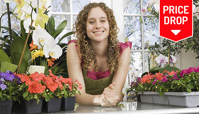 Ultimate Floristry Diploma Online Course