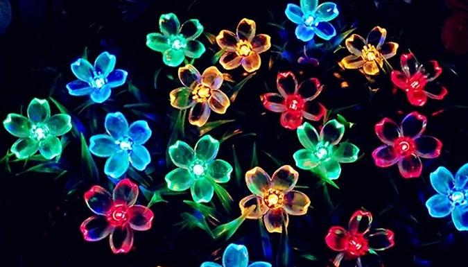 7m Flower Fairy Lights - 2 Colours
