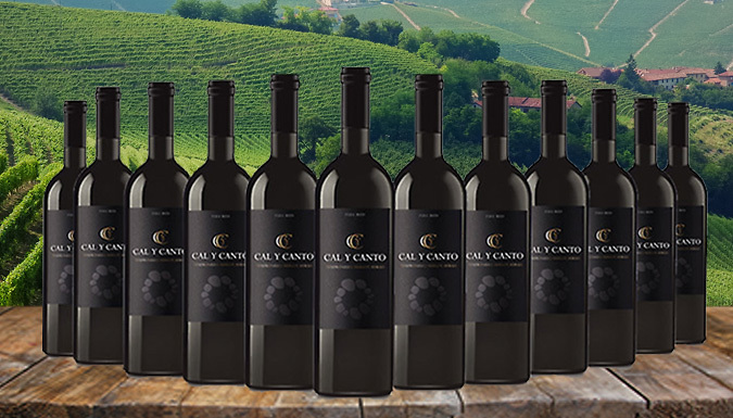 12 Bottles of Award-Winning Cal Y Canto Castilla Red Wine (£39.99)