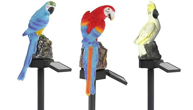 Parrot LED Garden Solar Light - 3 Colours