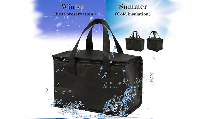 Large Picnic Insulated Cooler Bag