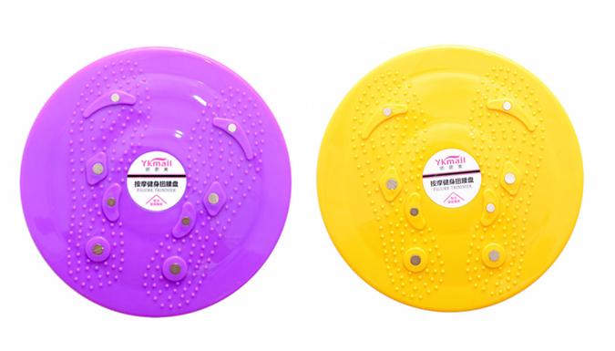 Swivel Plate Fitness Board- 5 Colours