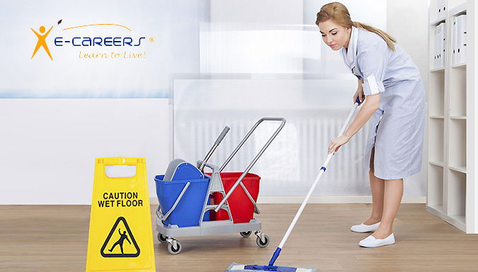 Online British Cleaner Certificate Award