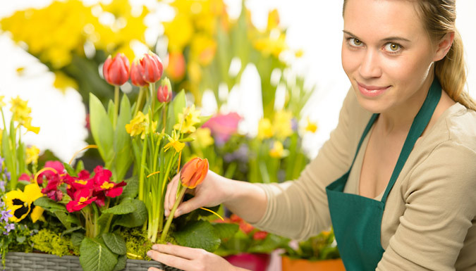 Floristry Online Diploma Course with Bonus Course in Social Media Marketing for Business