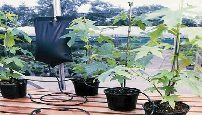 Image of 10.5L Instant Drip Gravity Plant Watering System