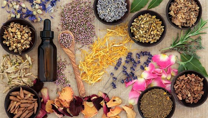 Homeopathy Diploma Online Course