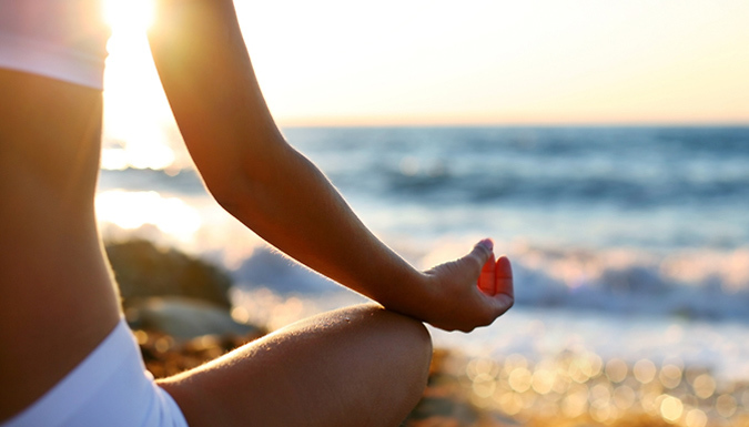 Healthy Body & Mind Online Course Bundle