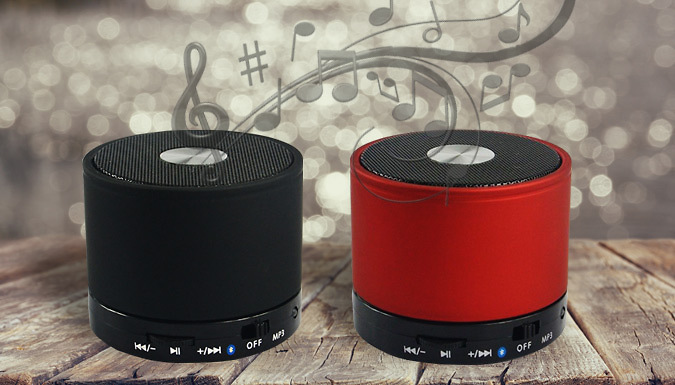 Mini Bluetooth Speaker  2 Colours