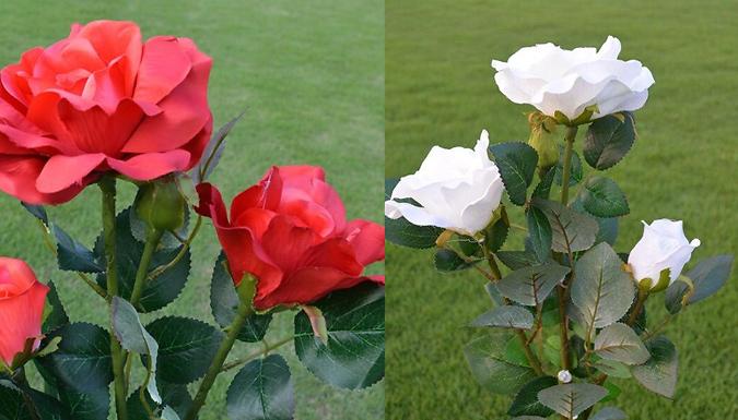 LED Solar Rose Light - 5 Colours