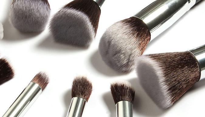 10-Piece Kabuki-Style Make Up Brush Set