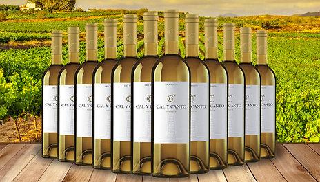 GoGroopie 12 Bottles of Award-Winning Cal Y Canto Castilla White Wine