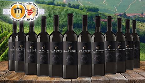 GoGroopie 12 Bottles of Award-Winning Cal Y Canto Castilla Red Wine